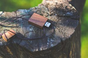 a wooden usb on a tree stump